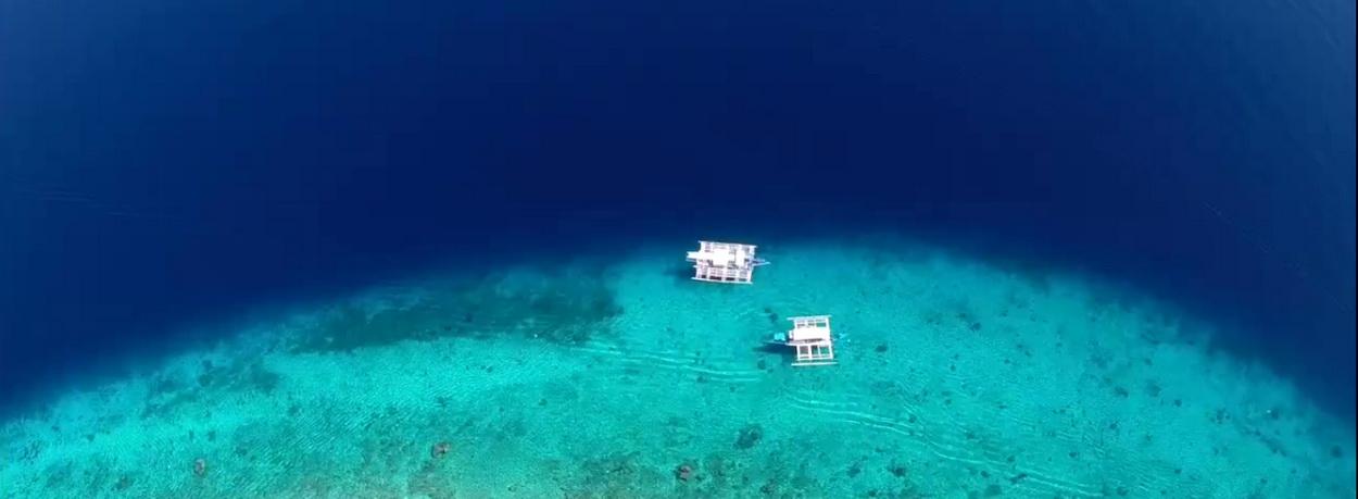 Tauchsafari Philippinen - glasklares Wasser am Tauchgebiet Sumilon Island